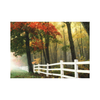 Early morning nature scenery stretched canvas prints