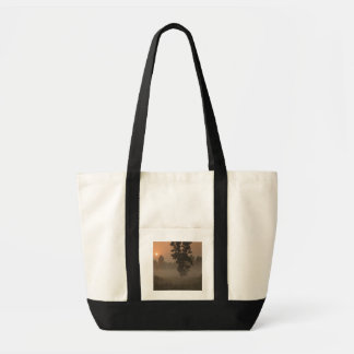 Early morning, rising sun and ground fog tote bag