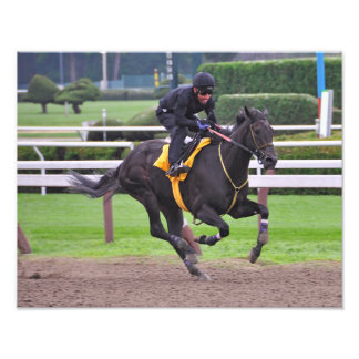 Early Morning Workouts at Saratoga Photo Print