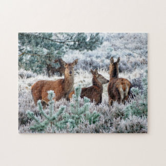 Early Rising Deer Jigsaw Puzzle