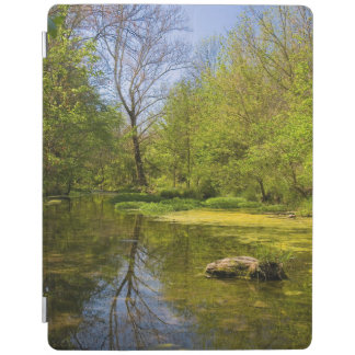Early Spring Along Creek Near Nashville iPad Cover