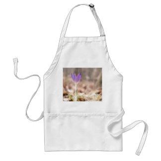 Early Spring Crocus Flower Standard Apron