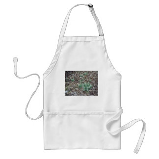 Early Spring flowers Apron