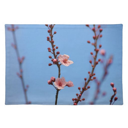 Early Spring Flowers Placemats