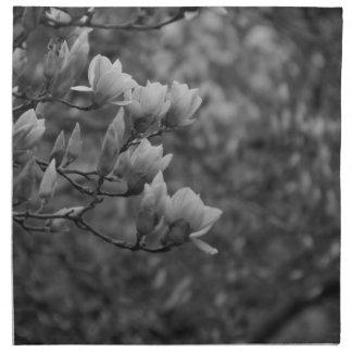 Early Spring Magnolia Blossoms Cloth Napkins