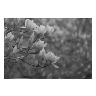 Early Spring Magnolia Blossoms Placemats