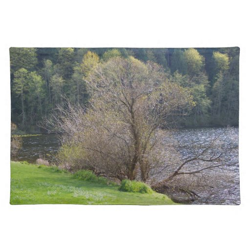Early Spring Place Mats