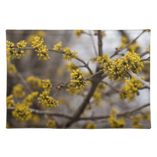 Early spring Placemats Cloth Place Mat