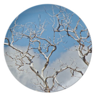 EARLY SPRING WITH BLUE SKY AND TREE BRANCHES DINNER PLATE