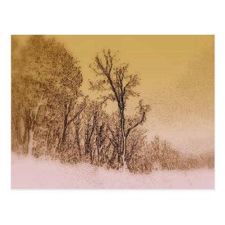 Early Winter Skyline Postcard