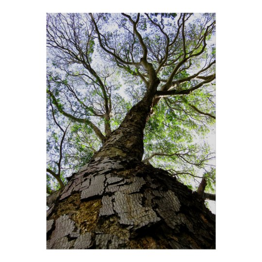 Earpod Tree Poster