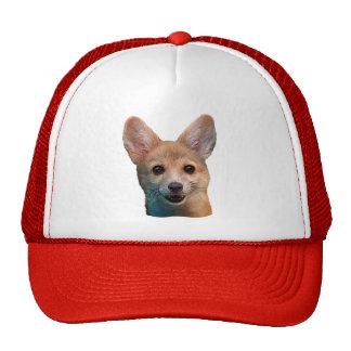 Ears - Trucker Hat