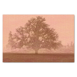 earth day sunset abstract oak tree silhouette tissue paper