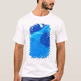 Earth from Satellite 4 T-Shirt