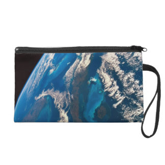 Earth from Space 31 Wristlets