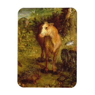 Earth or The Earthly Paradise, detail of a cow, po Rectangular Photo Magnet