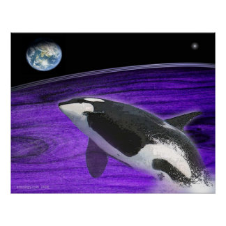 earth orca poster