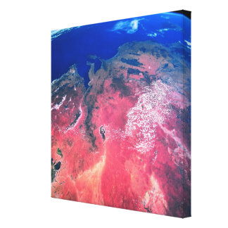 Earth Viewed from Space Canvas Print