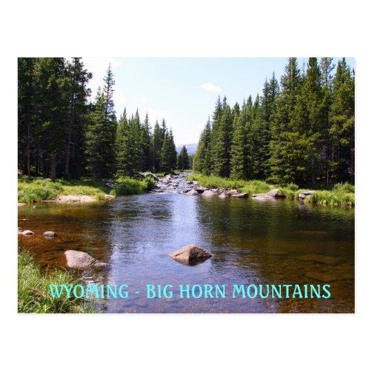 East Fork Big Goose, WYOMING - BIG HORN MOUN... Postcard