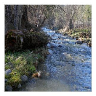 East Fork, Hayfork Creek... Poster