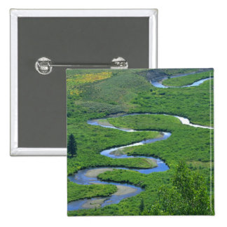 East River near the town of Crested Butte. Button