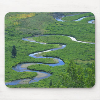 East River near the town of Crested Butte. Mouse Mat
