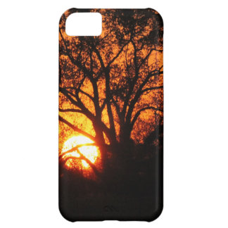 East Texas Sunset iPhone 5C Case