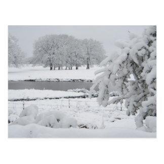 East Texas winter, 2009 Postcard