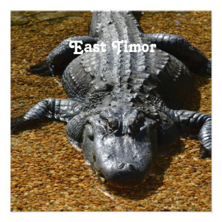 East Timor Crocodile Personalized Announcement