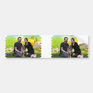 Easter - Australian Shepherd - Silas Barker Bumper Sticker