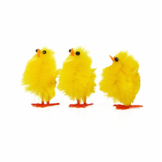 Easter baby chicks Photo Sculpture
