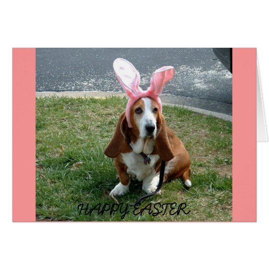 Easter basset, HAPPY EASTER card