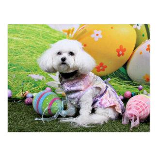 Easter - Bichon Frise - Mia Postcard