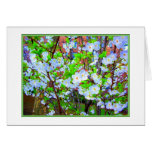 'Easter Blossoms' Greeting Card
