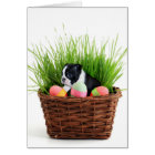 Easter Boston Terrier  dog Card
