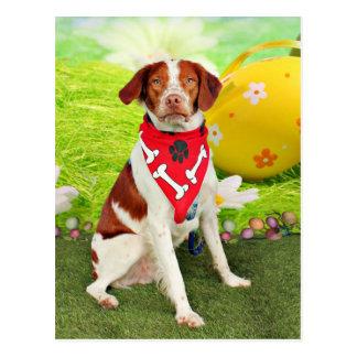 Easter - Brittany Spaniel - Elliott Postcard