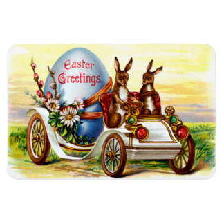 Easter Bunnies in Automobile Magnet