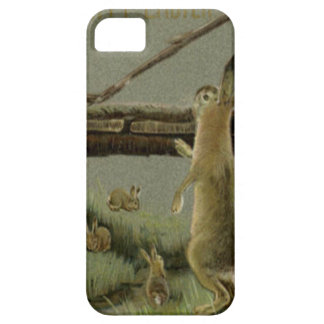 Easter Bunny Bridge Forest iPhone 5 Cover