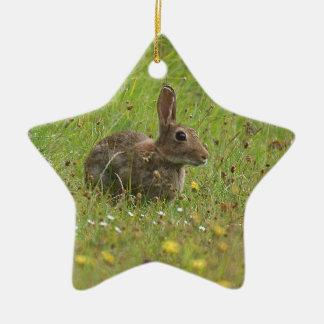 Easter Bunny Ceramic Star Decoration