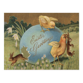Easter Bunny Chick Colored Egg Lily Daffodil Postcard