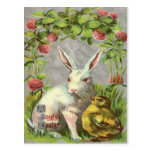 Easter Bunny Chick Shamrock Post Card