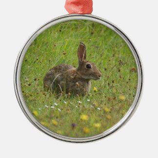 Easter Bunny Christmas Ornament