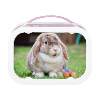 Easter Bunny Lunchbox