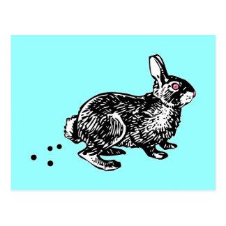 Easter Bunny Poo Postcard