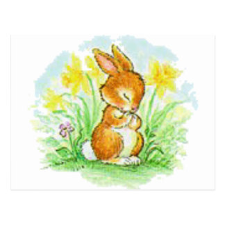 Easter Bunny Postcards