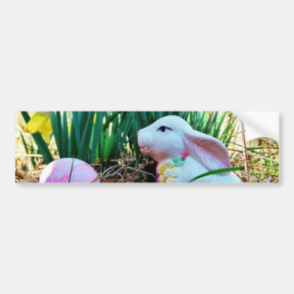 Easter Bunny with a pink egg Bumper Sticker
