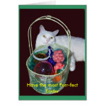 Easter Cat Card