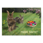 Easter Cats ;-) Greeting Card