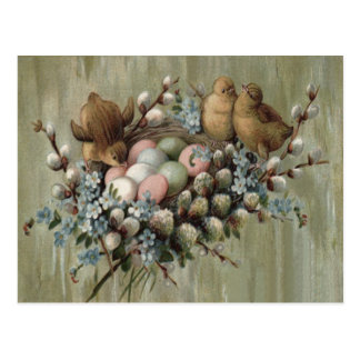 Easter Chick Nest Colored Egg Forget-Me-Nots Postcard