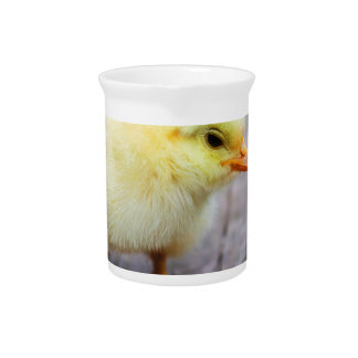 Easter Chick Pitcher